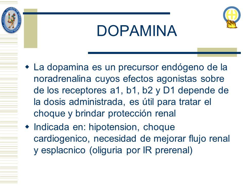 DOPAMINA La dopamina es un precursor endógeno de la noradrenalina cuyos efectos agonistas sobre de los receptores a1, b1, b2 y D1 depende de la dosis administrada, es útil para tratar el choque y brindar protección renal Indicada en: hipotension, choque cardiogenico, necesidad de mejorar flujo renal y esplacnico (oliguria por IR prerenal)