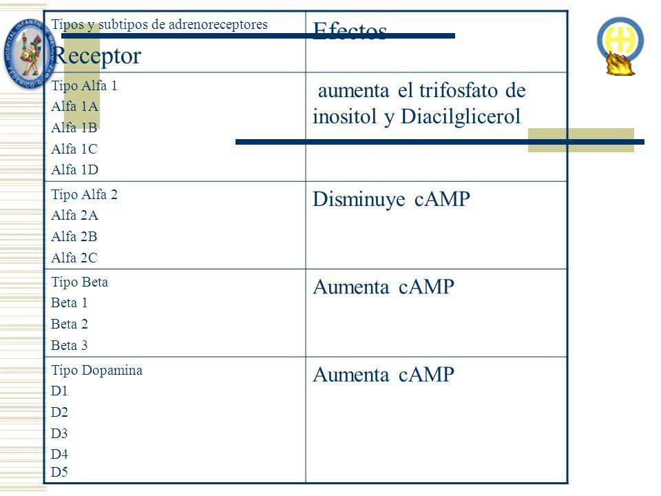 Tipos y subtipos de adrenoreceptores Receptor Efectos Tipo Alfa 1 Alfa 1A Alfa 1B Alfa 1C Alfa 1D aumenta el trifosfato de inositol y Diacilglicerol Tipo Alfa 2 Alfa 2A Alfa 2B Alfa 2C Disminuye cAMP Tipo Beta Beta 1 Beta 2 Beta 3 Aumenta cAMP Tipo Dopamina D1 D2 D3 D4 D5 Aumenta cAMP