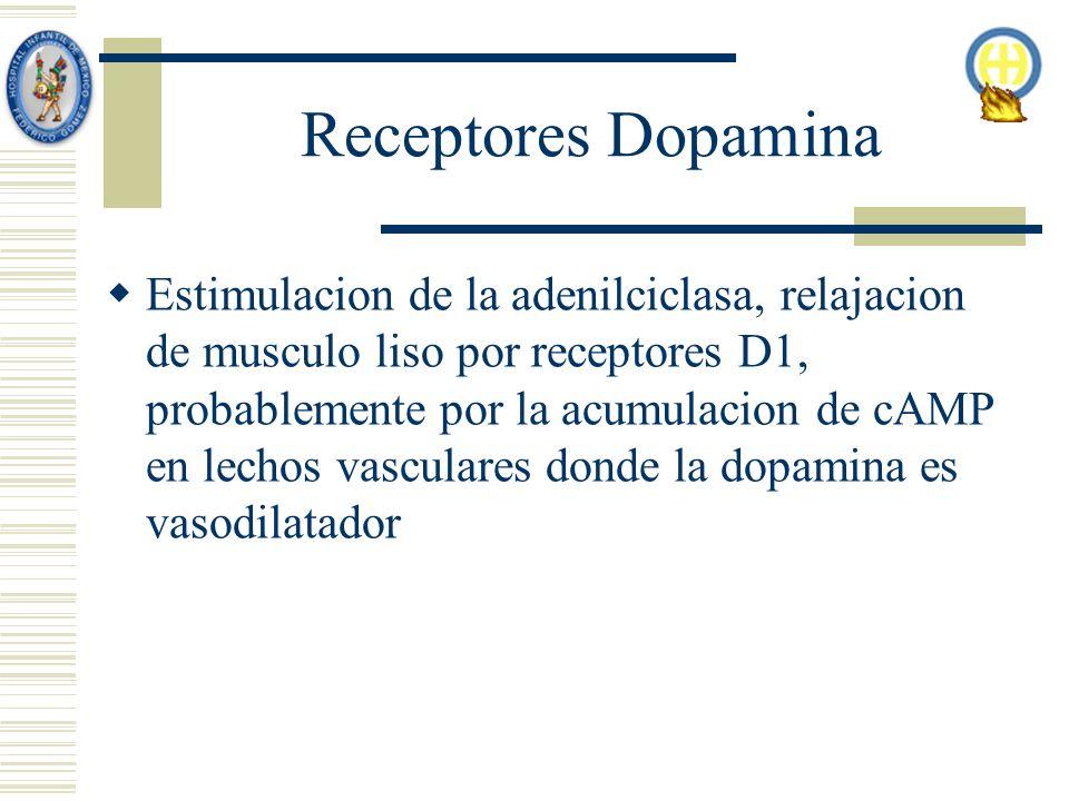Receptores Dopamina Estimulacion de la adenilciclasa, relajacion de musculo liso por receptores D1, probablemente por la acumulacion de cAMP en lechos vasculares donde la dopamina es vasodilatador