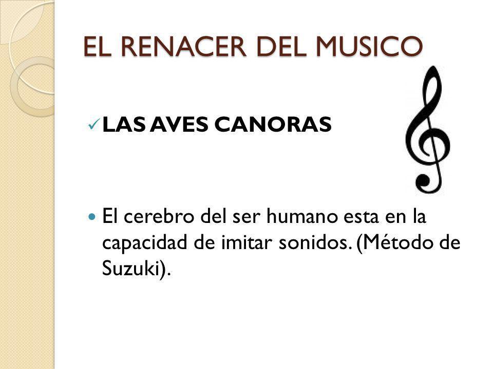 EL RENACER DEL MUSICO LAS AVES CANORAS El cerebro del ser humano esta en la capacidad de imitar sonidos. (Método de Suzuki).