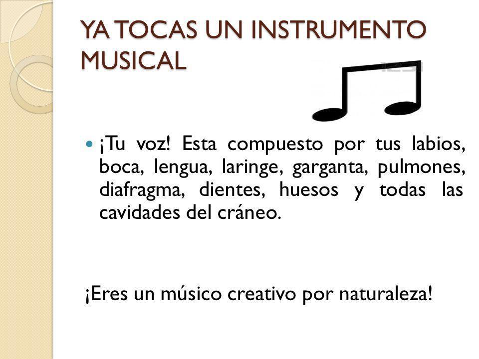 TU SEGUNDO INSTRUMENTO MUSICAL Tu oreja es otro instrumento sorprendente de mucha complejidad y sofisticación que cualquier otro creado por el ser humano.