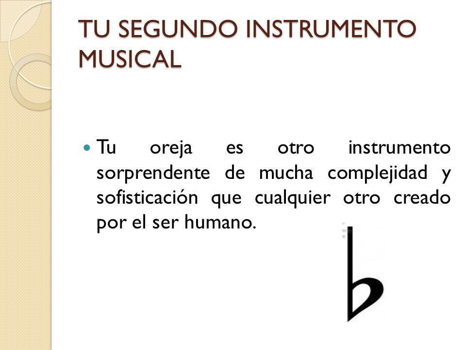 TU SEGUNDO INSTRUMENTO MUSICAL Tu oreja es otro instrumento sorprendente de mucha complejidad y sofisticación que cualquier otro creado por el ser hum