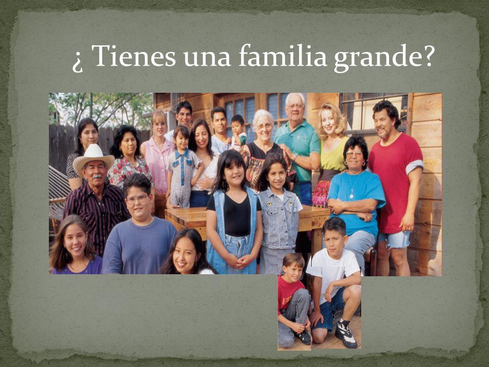 ¿ Tienes una familia grande?