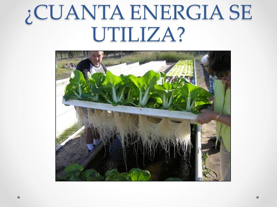 ¿CUANTA ENERGIA SE UTILIZA?