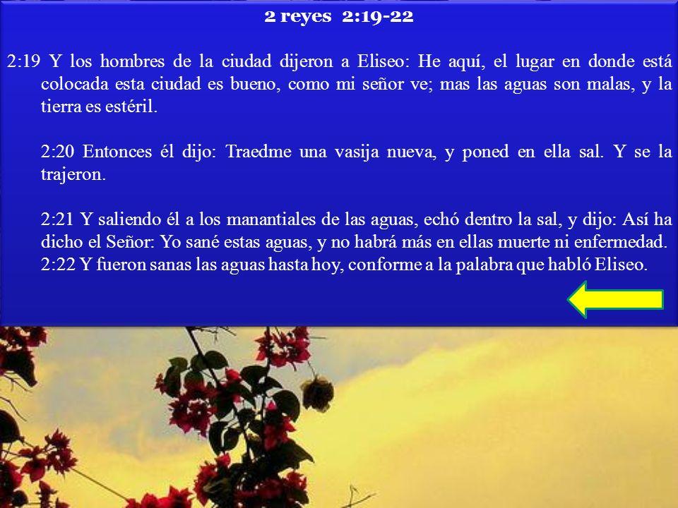 2 reyes 2:19-22 2:19 Y los hombres de la ciudad dijeron a Eliseo: He aquí, el lugar en donde está colocada esta ciudad es bueno, como mi señor ve; mas