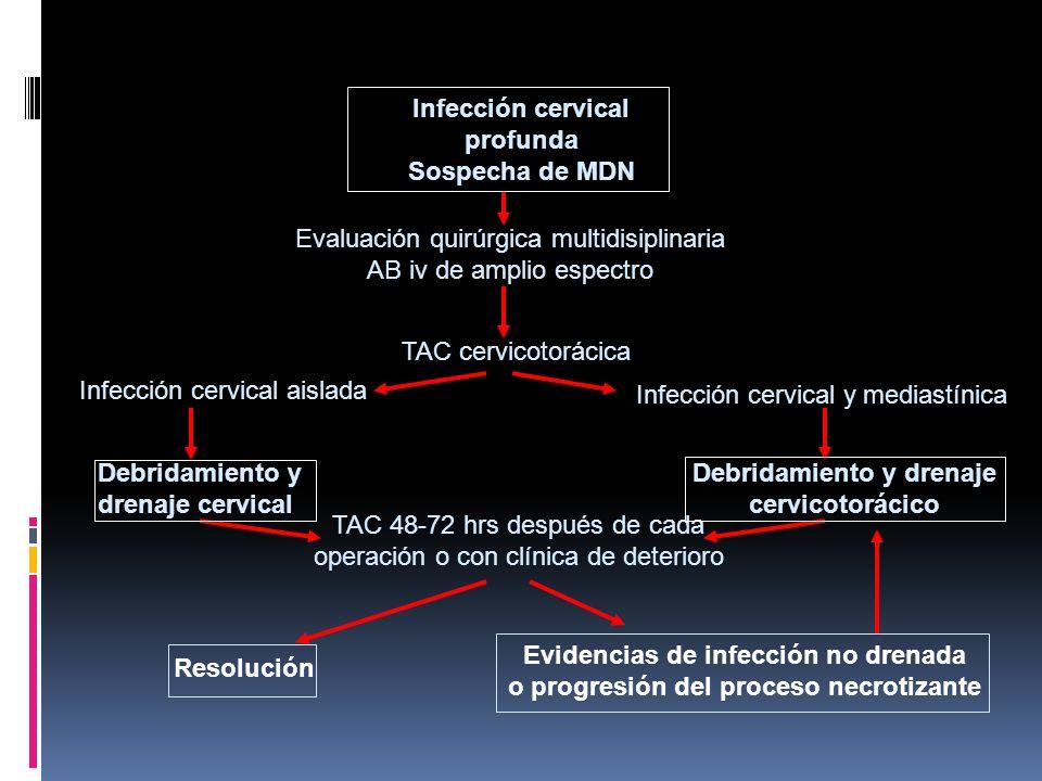 Infección cervical profunda Sospecha de MDN Evaluación quirúrgica multidisiplinaria AB iv de amplio espectro TAC cervicotorácica Infección cervical aislada Infección cervical y mediastínica Debridamiento y drenaje cervical Debridamiento y drenaje cervicotorácico TAC 48-72 hrs después de cada operación o con clínica de deterioro Resolución Evidencias de infección no drenada o progresión del proceso necrotizante