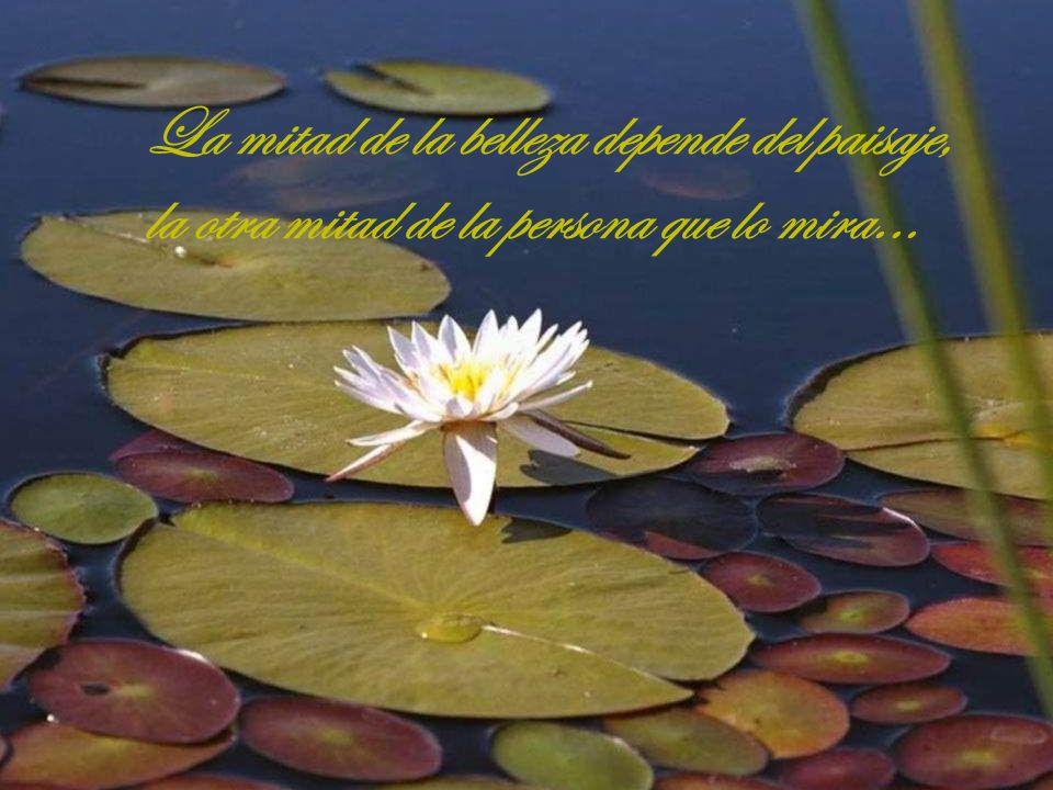 La mitad de la belleza depende del paisaje, la otra mitad de la persona que lo mira...