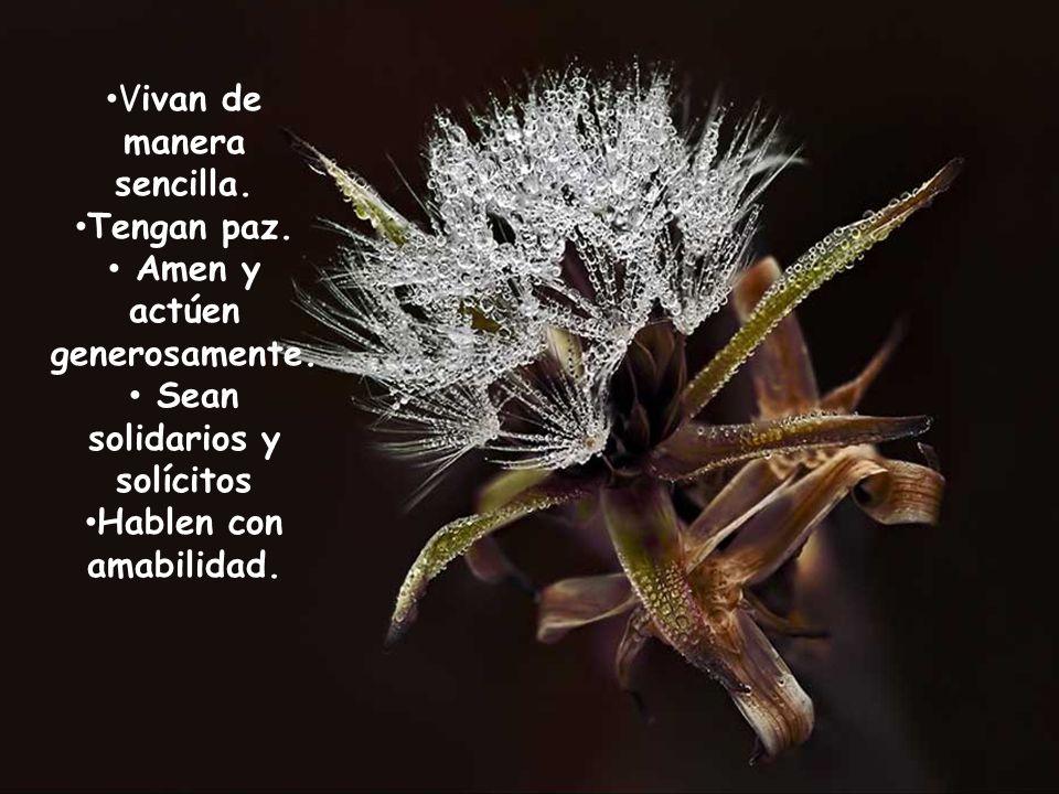 Vivan de manera sencilla.Tengan paz. Amen y actúen generosamente.