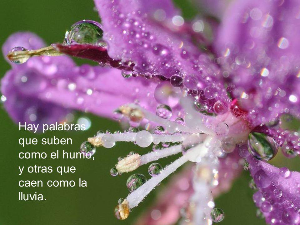 El amor consuela como el resplandor del sol después de la lluvia.