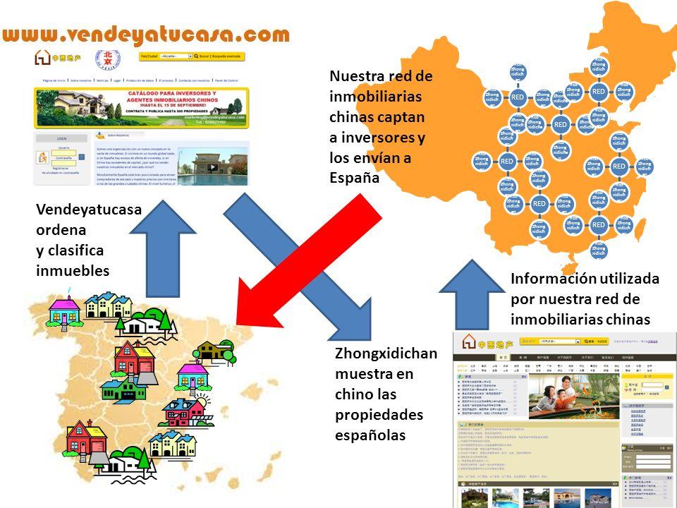 RED Red Zhong xidicha n Zhongxidichan muestra en chino las propiedades españolas Nuestra red de inmobiliarias chinas captan a inversores y los envían a España RED Red Zhong xidicha n RED Red Zhong xidicha n RED Red Zhong xidicha n RED Red Zhong xidicha n RED Red Zhong xidicha n RED Red Zhong xidicha n RED Red Zhong xidicha n Vendeyatucasa ordena y clasifica inmuebles Información utilizada por nuestra red de inmobiliarias chinas