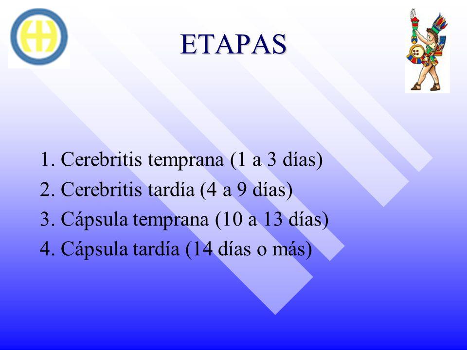 ETAPAS 1. Cerebritis temprana (1 a 3 días) 2. Cerebritis tardía (4 a 9 días) 3. Cápsula temprana (10 a 13 días) 4. Cápsula tardía (14 días o más)