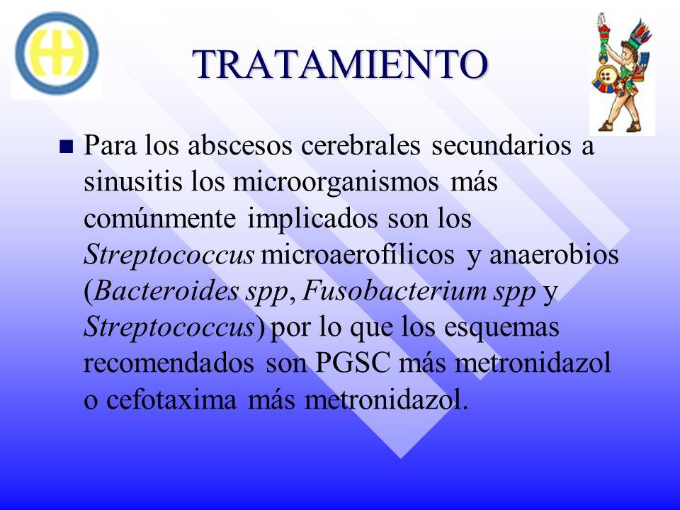 TRATAMIENTO Para los abscesos cerebrales secundarios a sinusitis los microorganismos más comúnmente implicados son los Streptococcus microaerofílicos