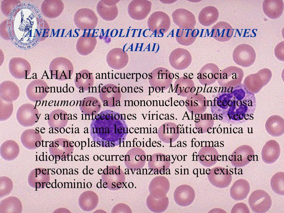ANEMIAS HEMOLÍTICAS AUTOIMMUNES (AHAI) La AHAI por anticuerpos fríos se asocia a menudo a infecciones por Mycoplasma pneumoniae, a la mononucleosis in