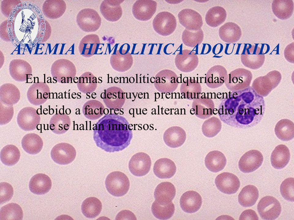 ANEMIA HEMOLITICA ADQUIRIDA En las anemias hemolíticas adquiridas los hematíes se destruyen prematuramente debido a factores que alteran el medio en e