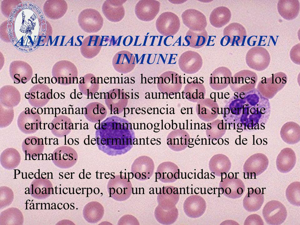 ANEMIAS HEMOLÍTICAS DE ORIGEN INMUNE Se denomina anemias hemolíticas inmunes a los estados de hemólisis aumentada que se acompañan de la presencia en