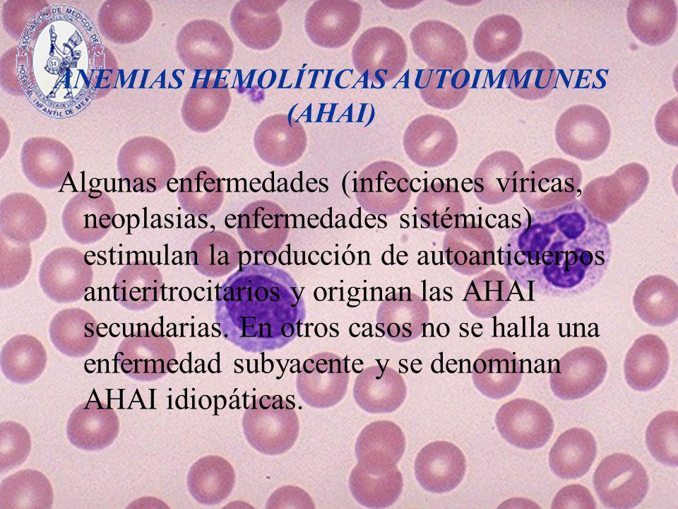 ANEMIAS HEMOLÍTICAS AUTOIMMUNES (AHAI) Algunas enfermedades (infecciones víricas, neoplasias, enfermedades sistémicas) estimulan la producción de auto