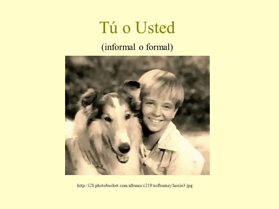 Tú o Usted (informal o formal) http://i28.photobucket.com/albums/c219/ucfburnsy/lassie3.jpg