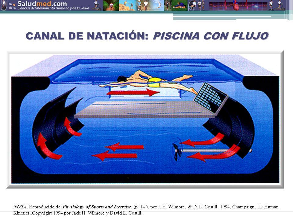 Copyright © 2013 Edgar Lopategui Corsino | Saludmed CANAL DE NATACIÓN: PISCINA CON FLUJO NOTA.