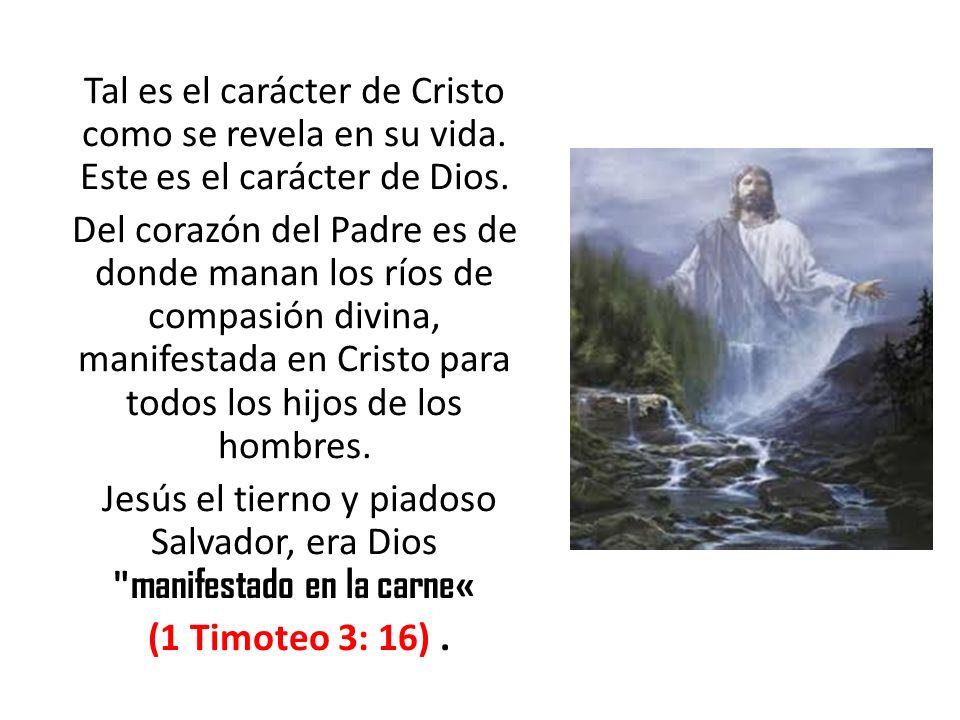 Tal es el carácter de Cristo como se revela en su vida. Este es el carácter de Dios. Del corazón del Padre es de donde manan los ríos de compasión div