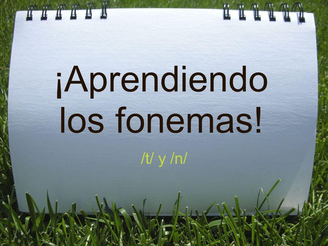 El fonema /t/ La /t/ es una consonante linguodental oclusiva sorda.