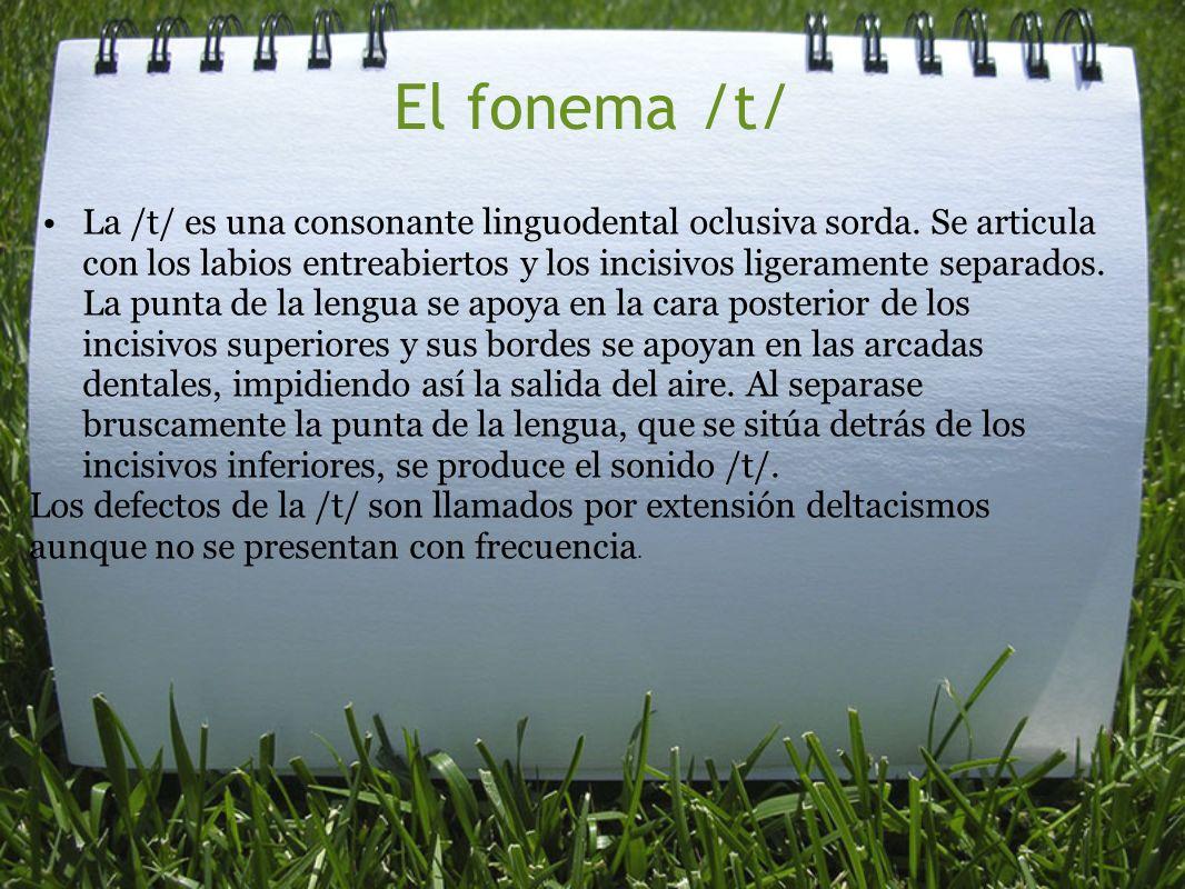 El fonema /t/ La /t/ es una consonante linguodental oclusiva sorda. Se articula con los labios entreabiertos y los incisivos ligeramente separados. La