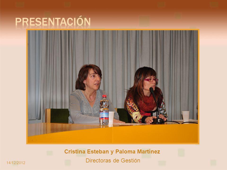 Ponente: Marcos López Hernández-Ardieta Psicólogo Clínico del CAID Este 14/12/2012