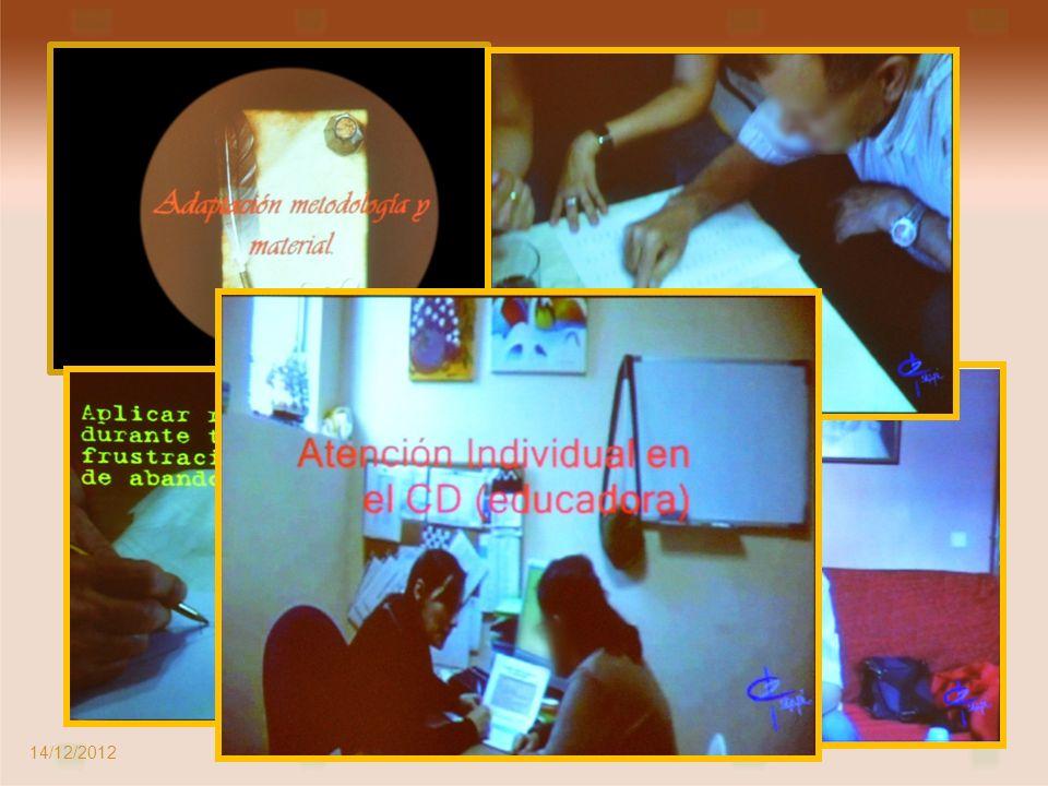 Ponente: Carolina Martín Educadora del Centro de Día de Alcalá 14/12/2012