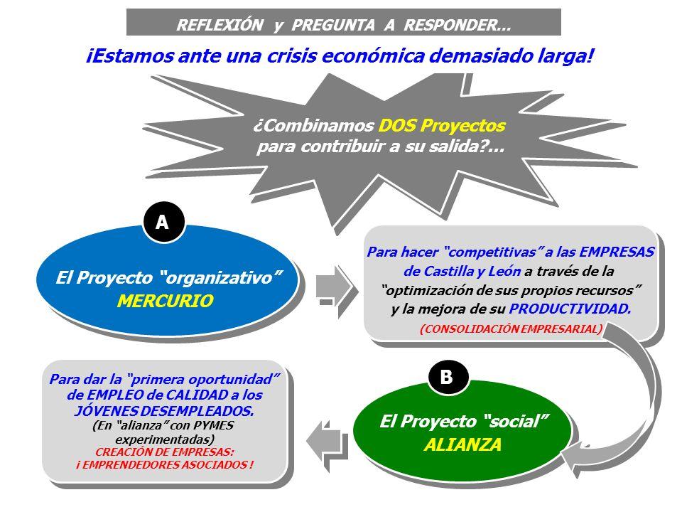 El Proyecto social ALIANZA El Proyecto social ALIANZA B Para hacer competitivas a las EMPRESAS de Castilla y León a través de la optimización de sus propios recursos y la mejora de su PRODUCTIVIDAD.