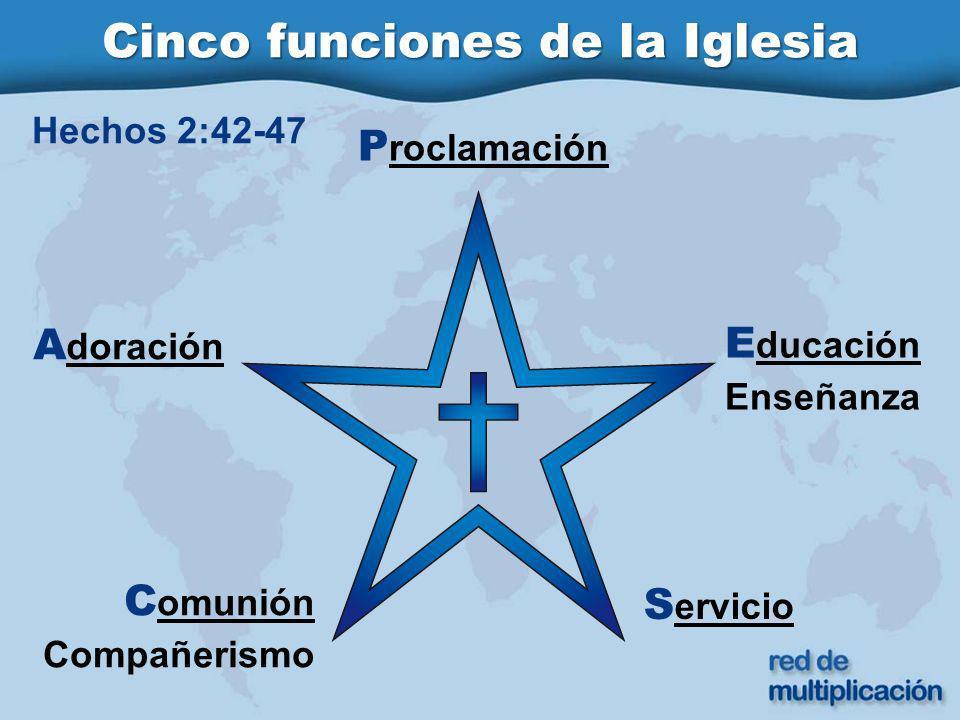 Cinco funciones de la Iglesia P roclamación A doración E ducación Enseñanza C omunión Compañerismo S ervicio Hechos 2:42-47