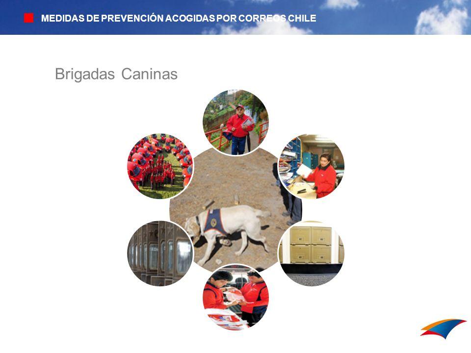 MEDIDAS DE PREVENCIÓN ACOGIDAS POR CORREOS CHILE Brigadas Caninas