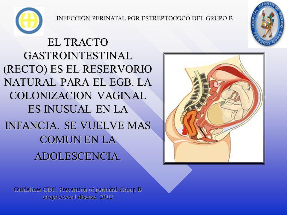 INFECCION PERINATAL POR ESTREPTOCOCO DEL GRUPO B