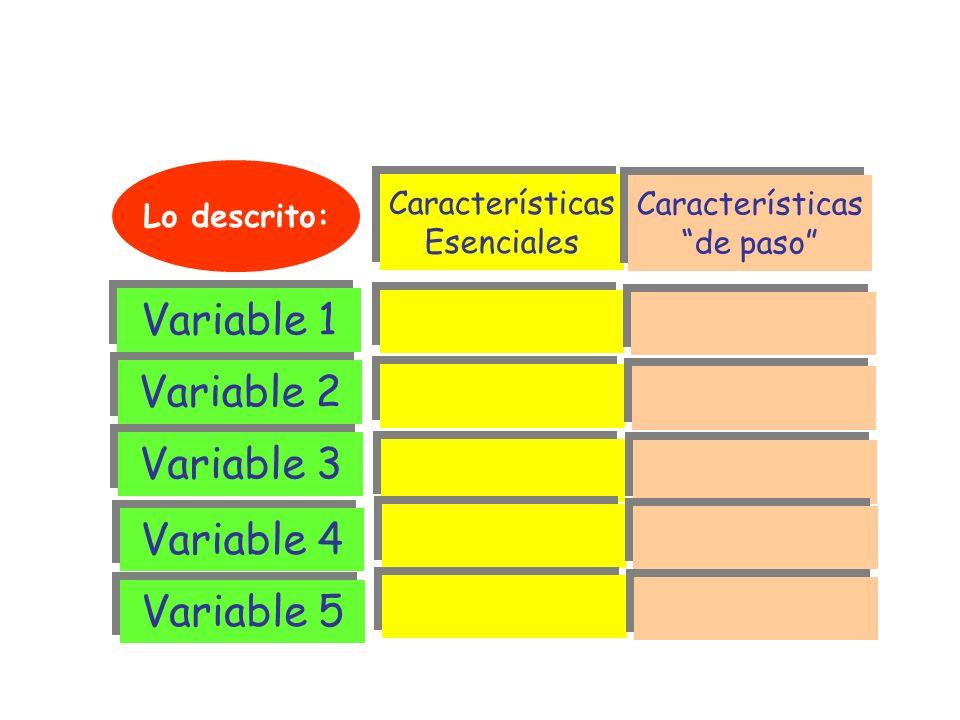 ESTRUCTURA DESCRIPTIVA Características Esenciales Características Esenciales Características de paso Características de paso Variable 1 Variable 2 Var