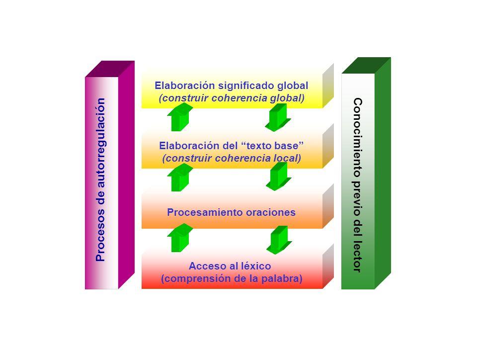 Acceso al léxico (comprensión de la palabra) Procesos de autorregulación Conocimiento previo del lector Procesamiento oraciones Elaboración del texto base (construir coherencia local) Elaboración significado global (construir coherencia global)