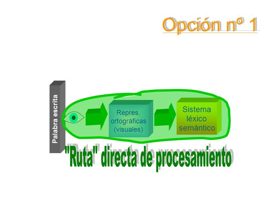 Sistema léxico semántico Palabra escrita Repres. ortográficas (visuales) Opción nº 1 Opción nº 1