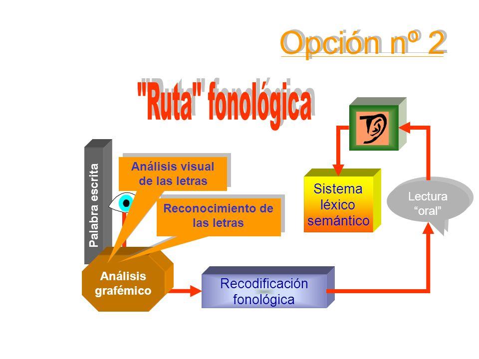 Sistema léxico semántico Palabra escrita Conocimiento de las RCGF Lectura oral Lectura oral Recodificación fonológica Análisis grafémico Análisis visu