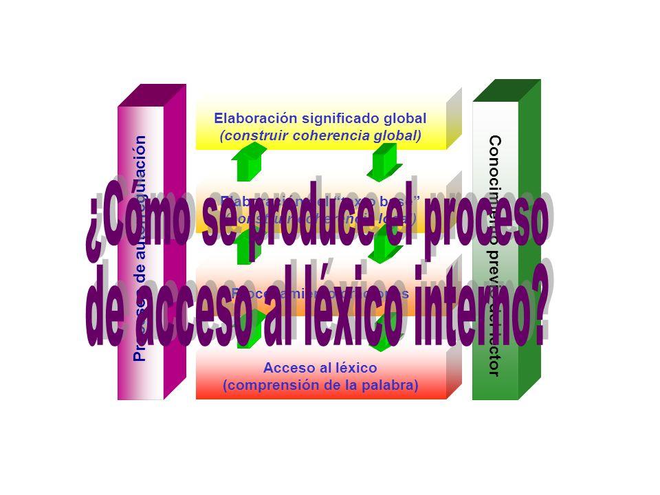 Acceso al léxico (comprensión de la palabra) Procesos de autorregulación Conocimiento previo del lector Procesamiento oraciones Elaboración del texto