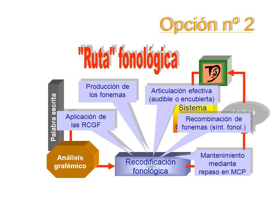 Sistema léxico semántico Palabra escrita Conocimiento de las RCGF Lectura oral Lectura oral Recodificación fonológica Análisis grafémico Aplicación de