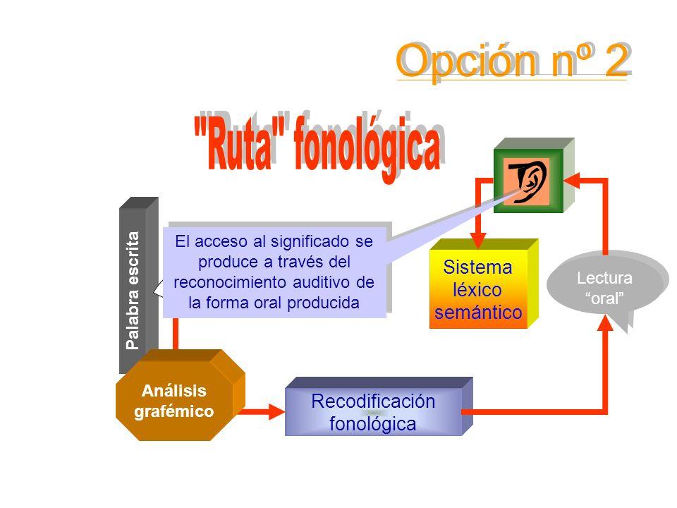 Sistema léxico semántico Palabra escrita Conocimiento de las RCGF Lectura oral Lectura oral Recodificación fonológica Análisis grafémico El acceso al
