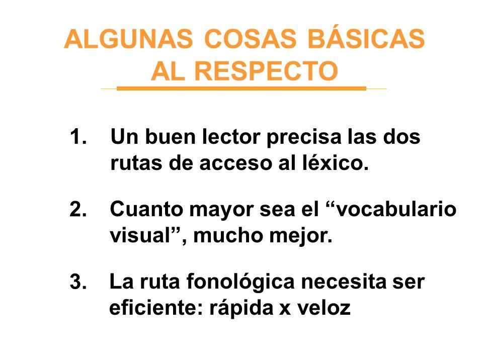 ALGUNAS COSAS BÁSICAS AL RESPECTO 1. 2. 3. Un buen lector precisa las dos rutas de acceso al léxico. Cuanto mayor sea el vocabulario visual, mucho mej
