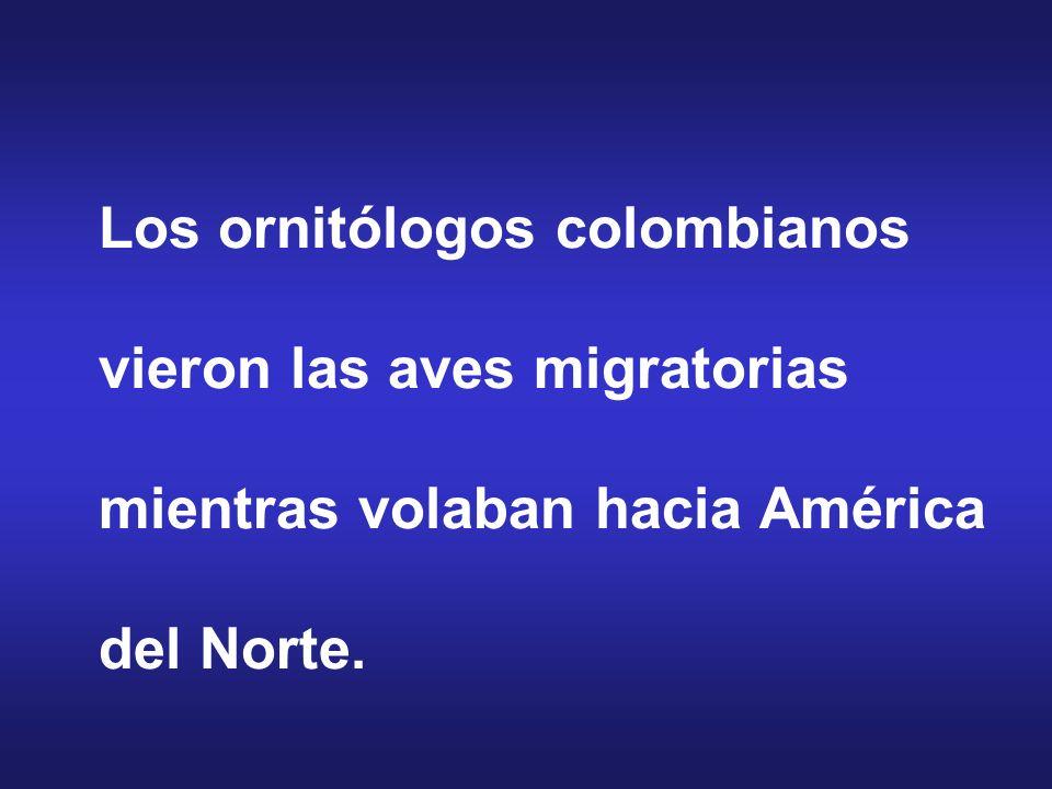 Los ornitólogos colombianos vieron las aves migratorias mientras volaban hacia América del Norte.