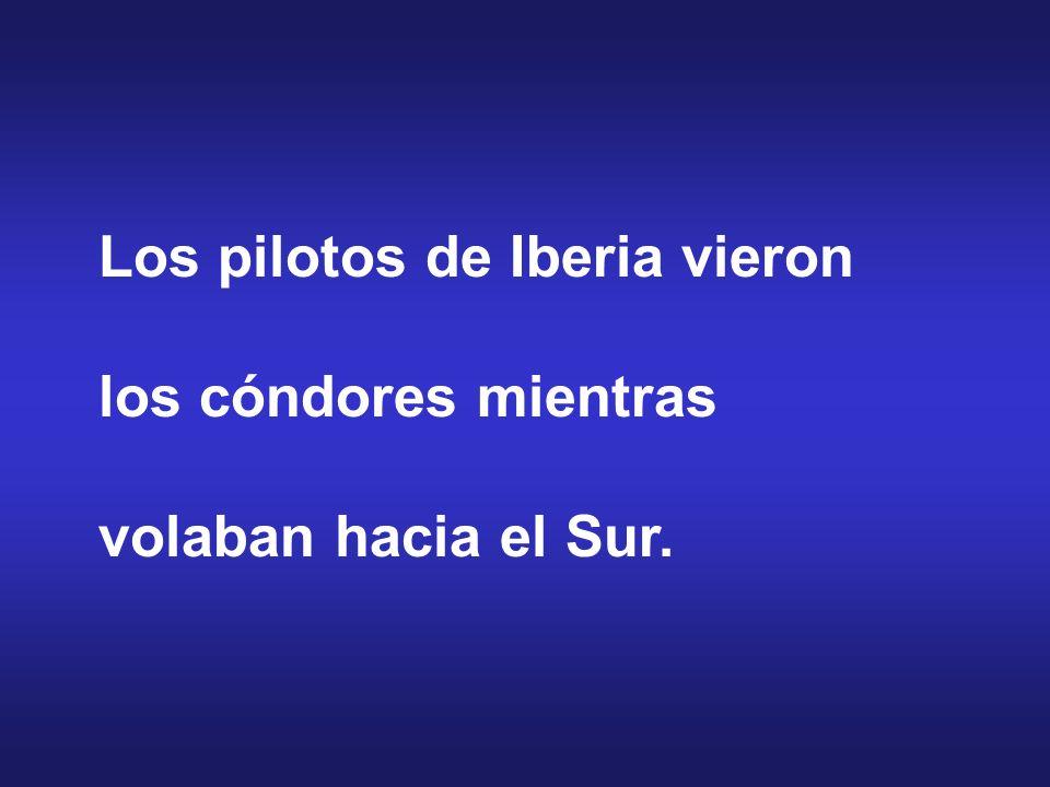Los pilotos de Iberia vieron los cóndores mientras volaban hacia el Sur.
