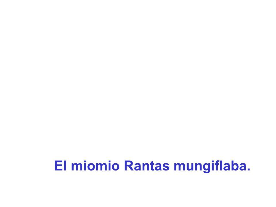 El miomio Rantas mungiflaba.