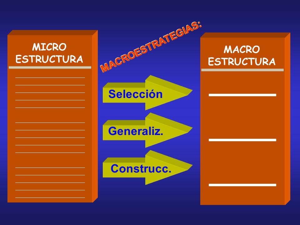 MICRO ESTRUCTURA MACRO ESTRUCTURA MACROESTRATEGIAS: Selección Generaliz. Construcc. M A C R O E S T R A T E G I A S :