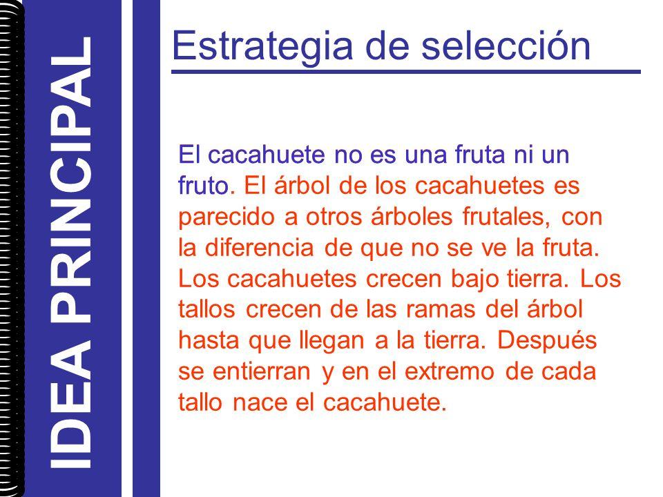 Estrategia de selección El cacahuete no es una fruta ni un fruto. El árbol de los cacahuetes es parecido a otros árboles frutales, con la diferencia d