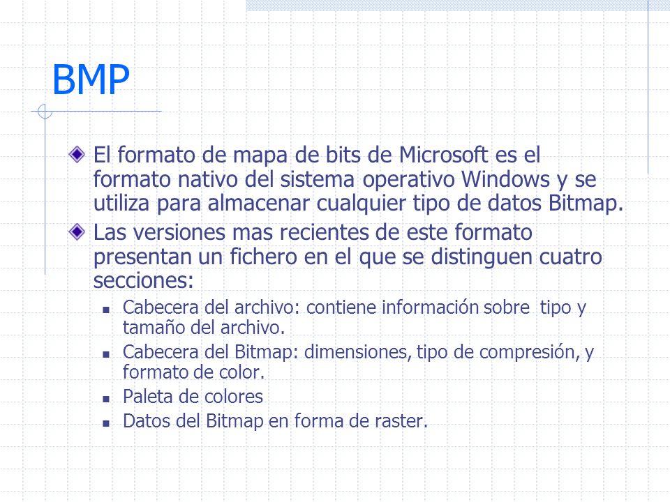 BMP El formato de mapa de bits de Microsoft es el formato nativo del sistema operativo Windows y se utiliza para almacenar cualquier tipo de datos Bit