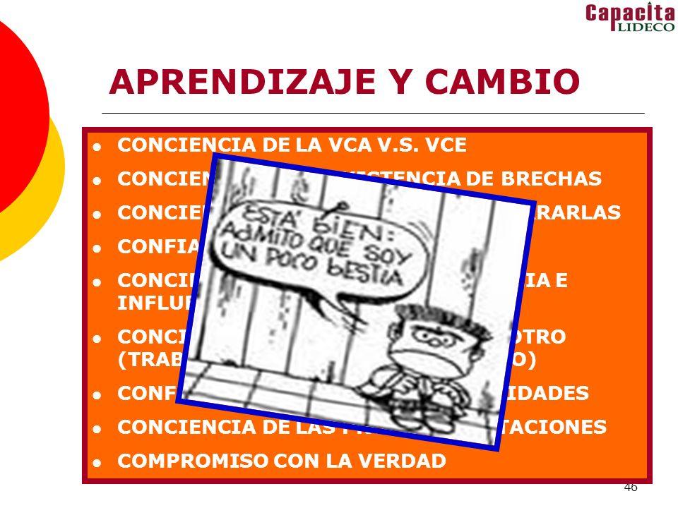 46 APRENDIZAJE Y CAMBIO CONCIENCIA DE LA VCA V.S. VCE CONCIENCIA DE LA EXISTENCIA DE BRECHAS CONCIENCIA DE LA NECESIDAD DE CERRARLAS CONFIANZA PARA AS