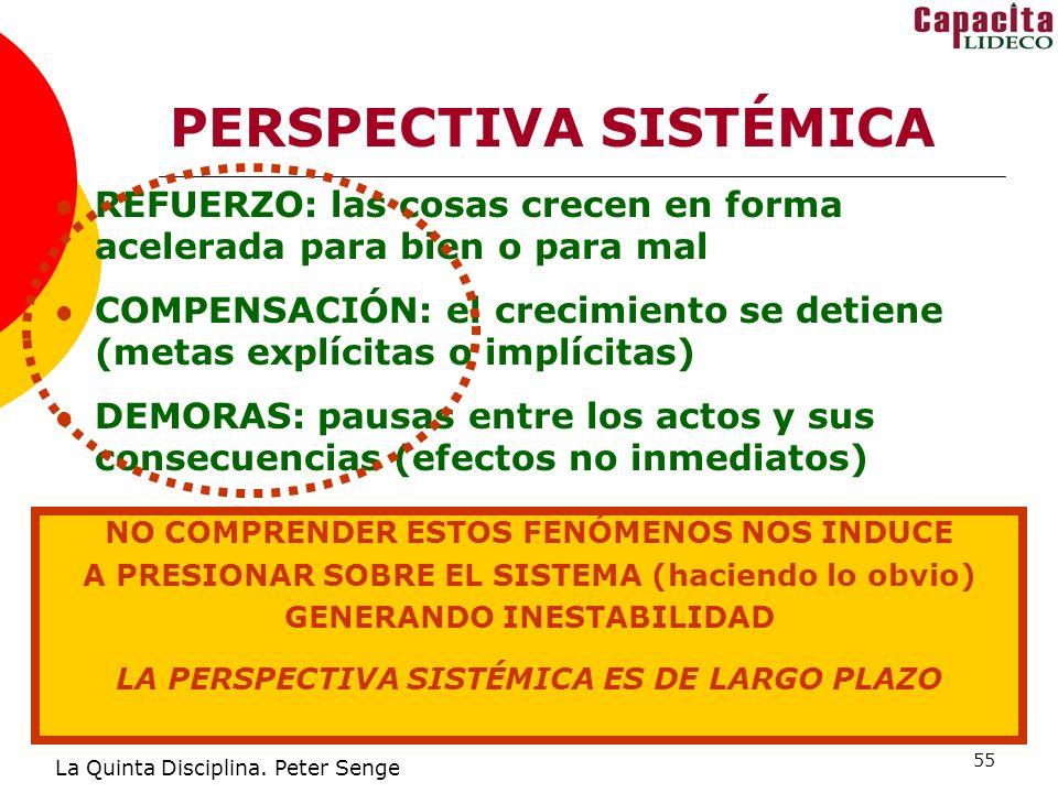 55 PERSPECTIVA SISTÉMICA La Quinta Disciplina.