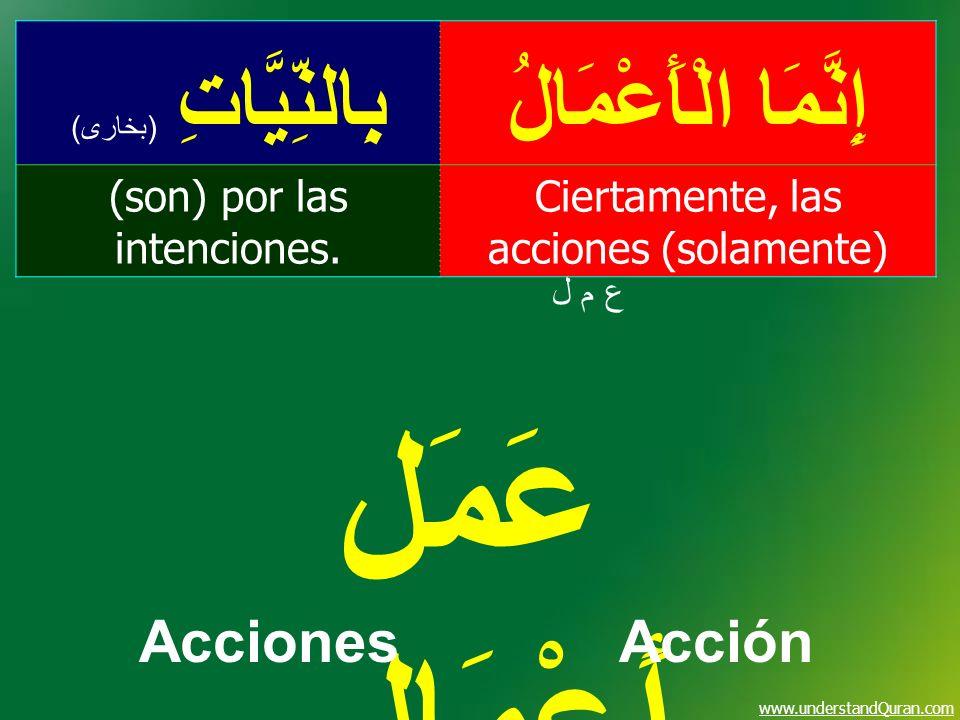 www.understandQuran.com إِنَّمَا الْأَعْمَالُبِالنِّيَّاتِ ( بخارى ) Ciertamente, las acciones (solamente) (son) por las intenciones. ع م لع م ل عَمَل