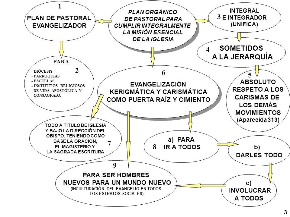 INTEGRAL E INTEGRADOR (UNIFICA) SOMETIDOS A LA JERARQUÍA ABSOLUTO RESPETO A LOS CARISMAS DE LOS DEMÁS MOVIMIENTOS (Aparecida 313) a) PARA IR A TODOS PARA SER HOMBRES NUEVOS PARA UN MUNDO NUEVO (INCULTURACIÓN DEL EVANGELIO EN TODOS LOS ESTRATOS SOCIALES) EVANGELIZACIÓN KERIGMÁTICA Y CARISMÁTICA COMO PUERTA RAÍZ Y CIMIENTO EVANGELIZACIÓN KERIGMÁTICA Y CARISMÁTICA COMO PUERTA RAÍZ Y CIMIENTO TODO A TÍTULO DE IGLESIA Y BAJO LA DIRECCIÓN DEL OBISPO.