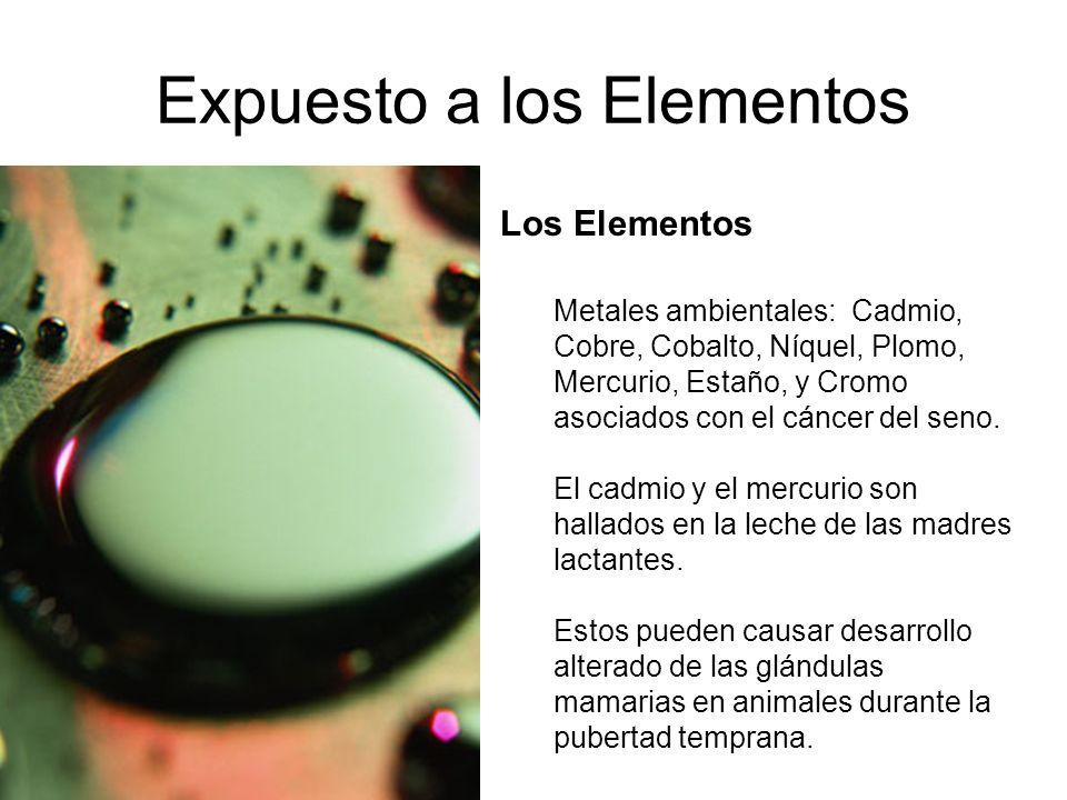 Expuesto a los Elementos Los Elementos Metales ambientales: Cadmio, Cobre, Cobalto, Níquel, Plomo, Mercurio, Estaño, y Cromo asociados con el cáncer d